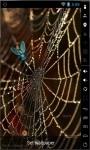 Golden Spider Web Live Wallpaper screenshot 1/2