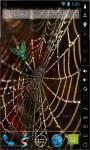 Golden Spider Web Live Wallpaper screenshot 2/2