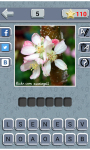 GUESS THE WORD - 4 Pics 1 word screenshot 3/4