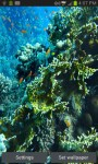 Coral Reef In the Deep Sea LWP free screenshot 5/6