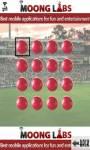 Cricketers Memory Game screenshot 4/6