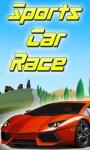 Sports Car Race screenshot 1/1