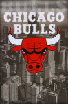 Chicago Bulls Fan screenshot 1/1