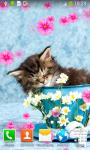 Kitty Live Wallpapers screenshot 4/6