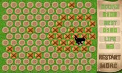 Cage Cat screenshot 3/4