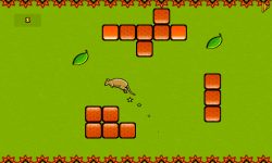 Kangaroo Jump In Game screenshot 3/3