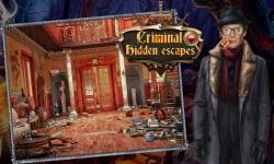 Criminal Hidden Escapes screenshot 1/5