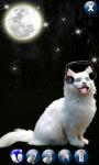 White Cute Cat screenshot 2/4