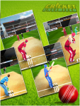Cricket  Unlimited screenshot 4/6