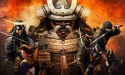 Samurai Best Wallpapers HD screenshot 2/2