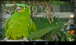Colorful Parrots Live screenshot 3/4