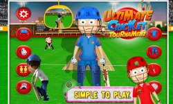 Ultimate Cricket Tournament screenshot 2/6