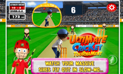 Ultimate Cricket Tournament screenshot 6/6