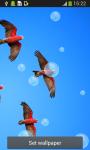 Birds Live Wallpapers Top screenshot 1/6