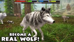 Ultimate Wolf Simulator final screenshot 5/6