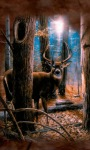 Beautiful Deer Live Wallpape screenshot 1/3