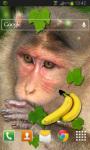 Monkey Live Wallpaper HD screenshot 2/2