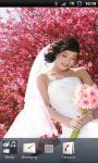 Wedding Dresses Gallery screenshot 4/6