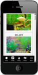Home Aquarium For Beginners screenshot 4/4