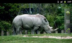 African Animals - Wallpaper Slideshow screenshot 2/6