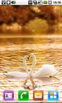 SwanLove Live Wallpaper screenshot 1/3
