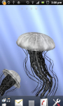 3D Jellyfish Live Wallpaper screenshot 4/6