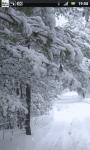 Snowfall Winter Road Live Wallpaper screenshot 2/6