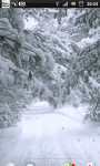 Snowfall Winter Road Live Wallpaper screenshot 3/6
