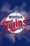 Minnesota Twins Fan screenshot 1/4