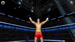 Kickboxing Road To Champion active screenshot 6/6