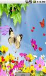 Cute Butterfly Live Wallpaper screenshot 1/4