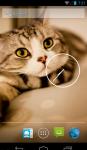 Cute Cat HD Wallpaper  screenshot 3/4