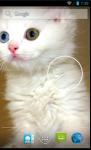 Cute Cat HD Wallpaper  screenshot 4/4