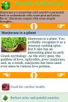 Benefits of Marjoram screenshot 3/3