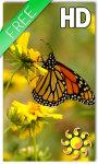 Butterfly Live Wallpaper HD Free screenshot 1/2