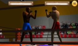 Wrestling Fight 3D screenshot 1/6