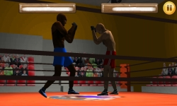 Wrestling Fight 3D screenshot 2/6
