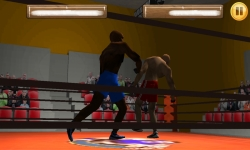 Wrestling Fight 3D screenshot 3/6