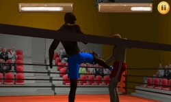 Wrestling Fight 3D screenshot 4/6