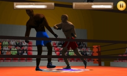 Wrestling Fight 3D screenshot 5/6