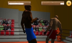 Wrestling Fight 3D screenshot 6/6