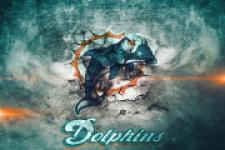 Miami Dolphins Fan screenshot 1/3