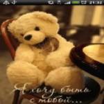 Teddy Bear Animated screenshot 4/4