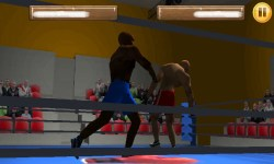 Box Fighters 3D screenshot 3/6