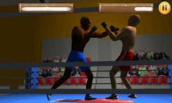 Box Fighters 3D screenshot 6/6