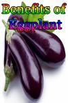 Benefits of Eggplant screenshot 1/3