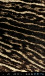 Animal fur textures LWP screenshot 3/5
