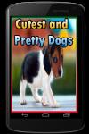 Cutest and Pretty Dogs screenshot 1/3