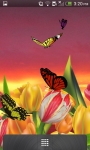 3D Butterfly Garden Wallpaper screenshot 2/5