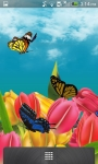 3D Butterfly Garden Wallpaper screenshot 3/5